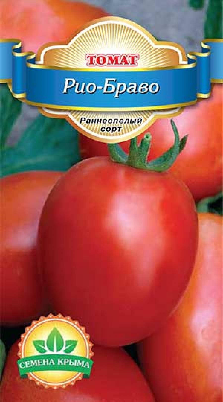 tomat-trans-novinka-opisanie