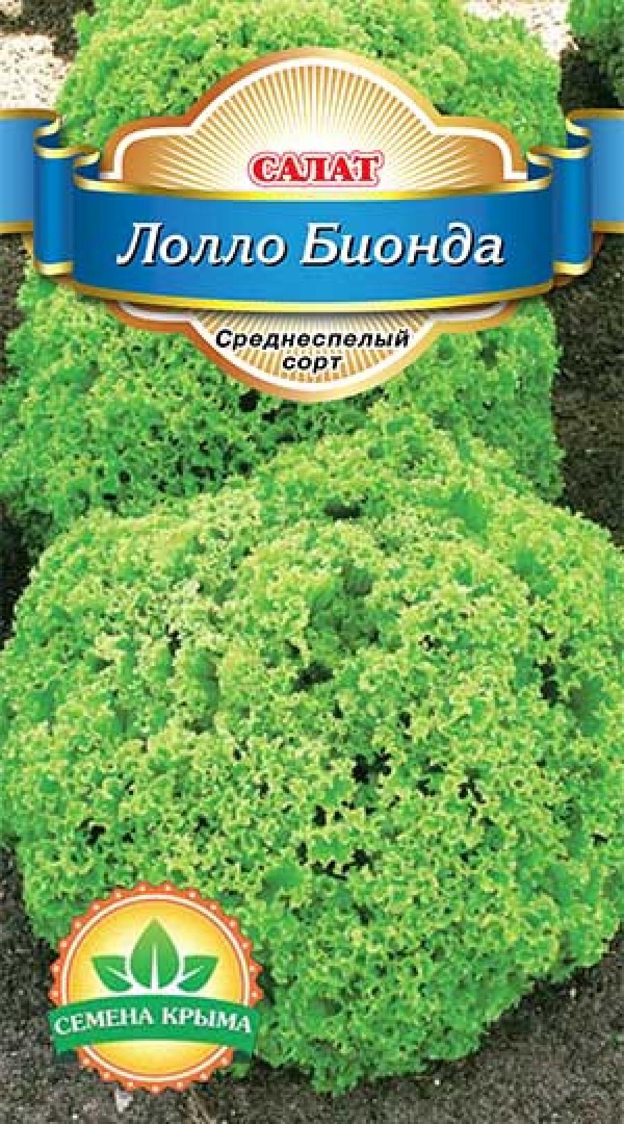 Как посадить салат лолло бионда